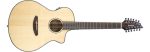 BREEDLOVE GTR PSCN01XCESSMA Pursuit Series Concert 12-String Acoustic-Electric Guitar; Sitka Spruce & Mahogany